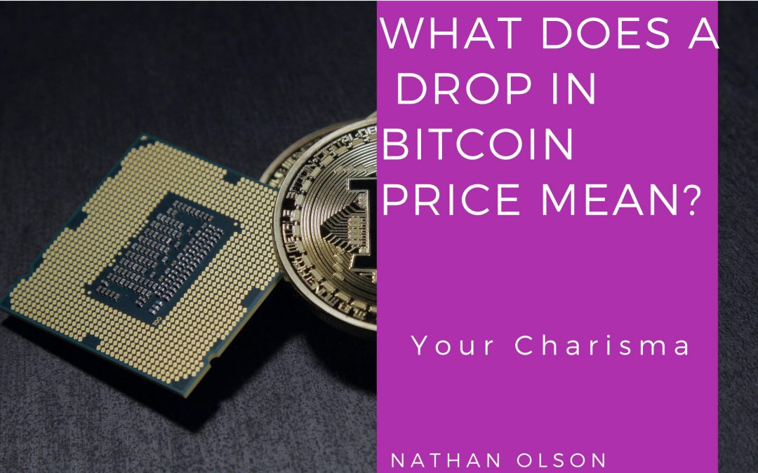 What Does the Drop in Bitcoin Price Mean? | How to Read Market Trends