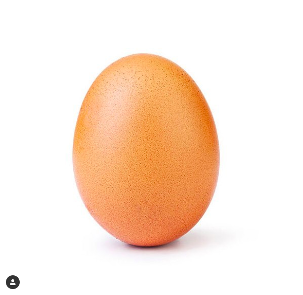 The Egg that Broke Instagram | World Record Instagram Egg