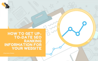 How to Get Up-to-Date SEO Ranking Information for Your Website
