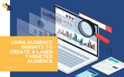 Using Audience Insights to Create a Laser Targeted Audience